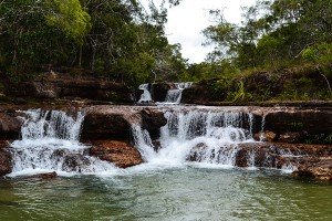 Cape-York,-Qld-2013-06-16-250+lr-web
