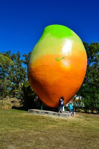 East-Coast, Big Mango Bowen