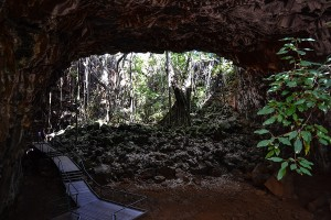 Savannah-Way, Undara Lava Tube 2